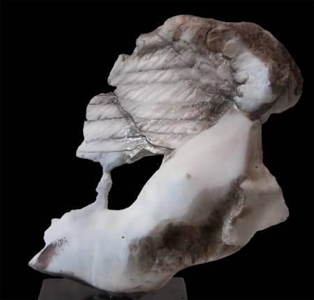 Angel-fragment
